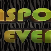 diaspora-events-cover-photo