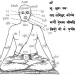 The Scientific Meaning of the Gayatri Mantra … from Vishal