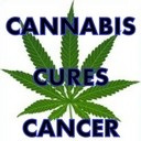 Cannabis Kills Cancer says UCLA and Others … from Inti