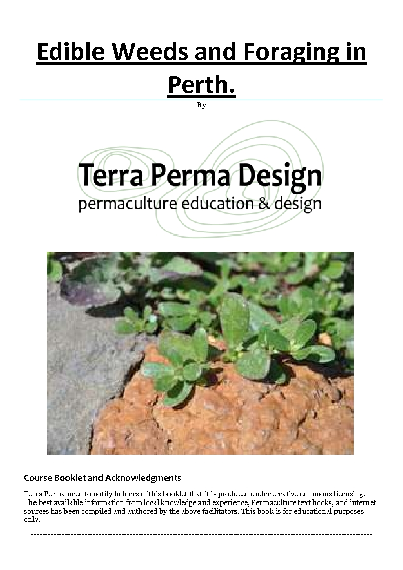 Edible Weeds and Foraging in Perth by Terra Perma Design